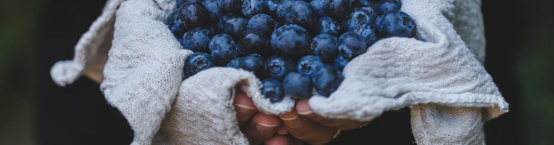 Blueberries for Heart Health