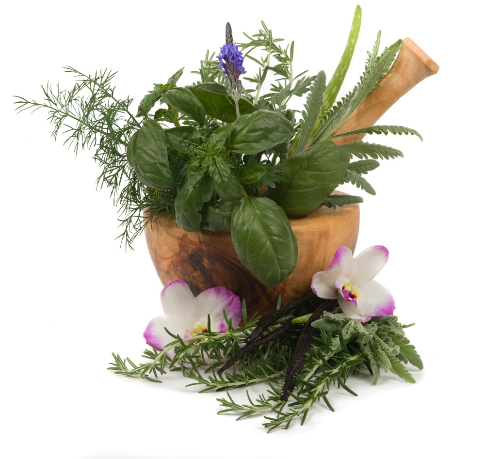 HOLISTIC NATURAL REMEDIES THERAPIES